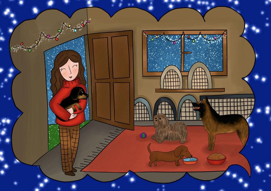 Storie di cani: disegno in cui il cane Candito viene portato in canile