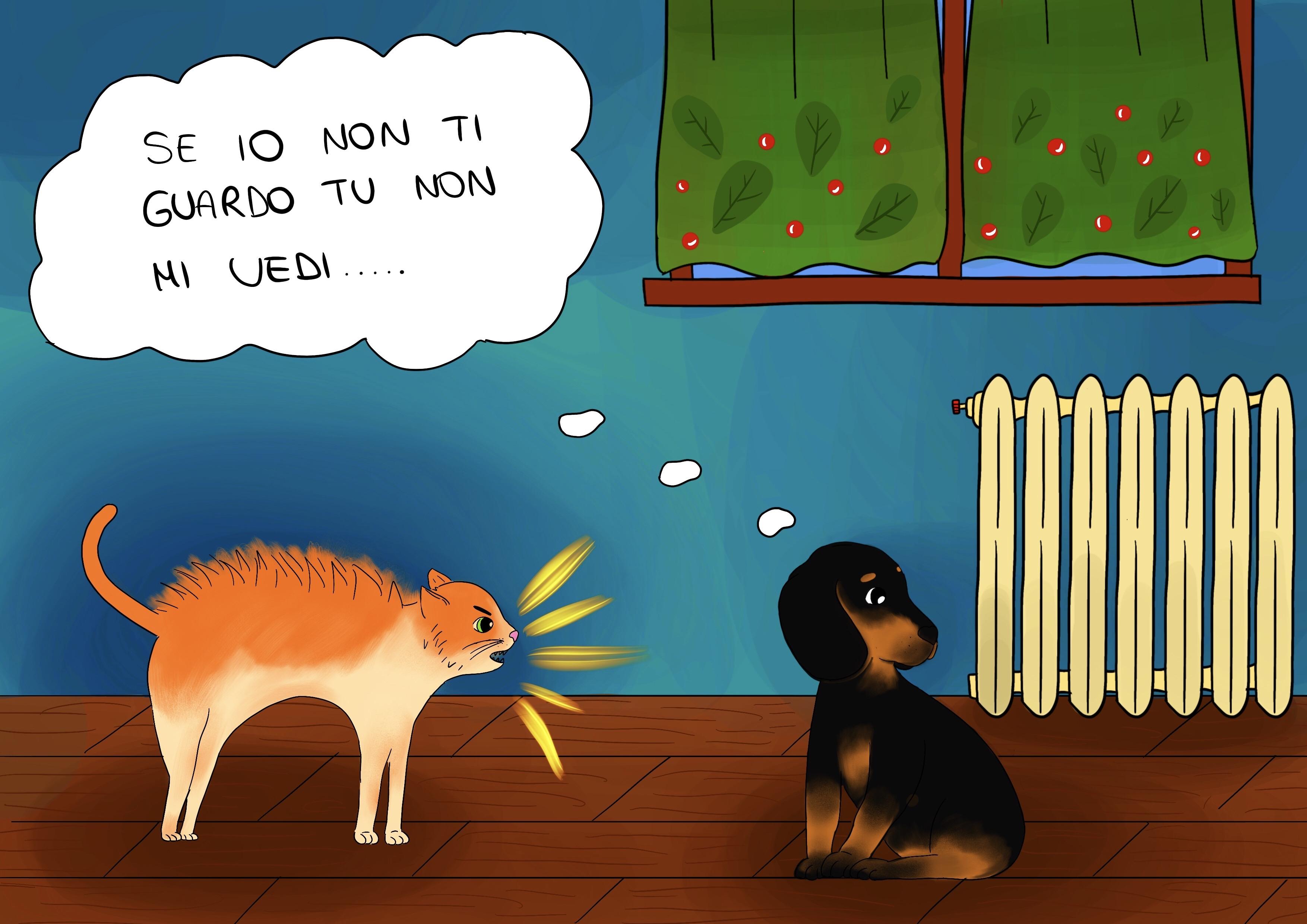 Candito racconta a Cicciobello della gatta Ginger e della sua prepotenza